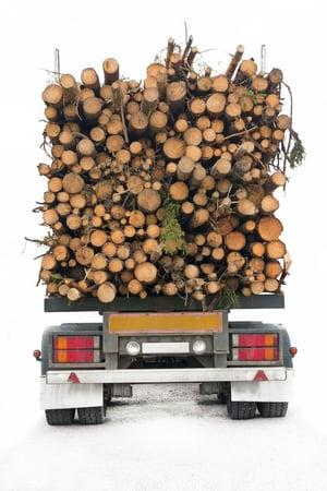 Wood_10080456_s